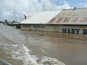marina-muddy-waters-Small1